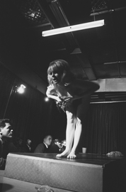 Capucine, a stripper at The Pink Pussycat, Kings Cross, is filmed for The Naked Bunyip