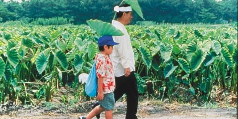 Kikujiro (Takeshi Kitano, 1999)