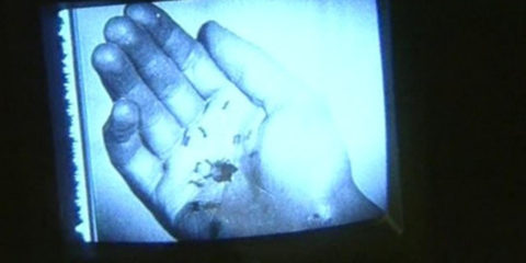 The Expression of Hands (1997)